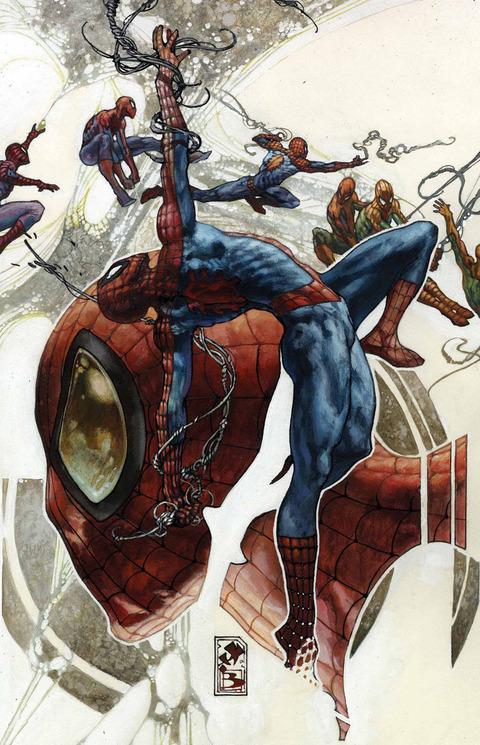 AM-SPIDER-MAN-ANN-VAR-298c9 (1)