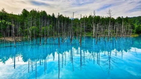 130425青い池@北海道 白金温泉