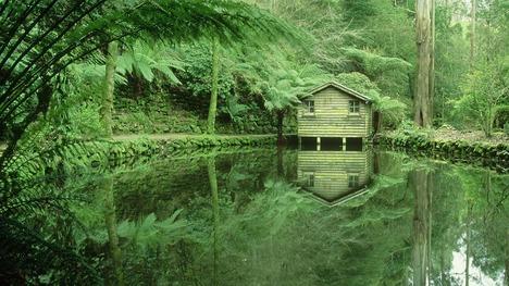 140704アルフレッドニコラス記念庭園@オーストラリア ビクトリア州