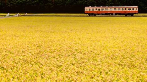 131007ひたちなか海浜鉄道湊線@茨城 ひたちなか市