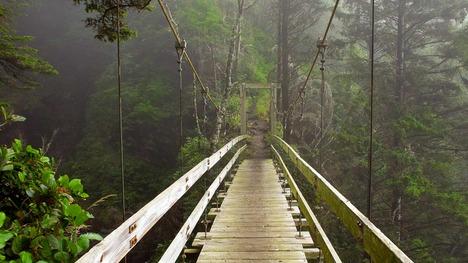 140507せせらぎを渡る木の吊り橋@カナダ バンクーバー島