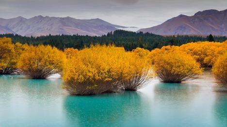 130509氷河湖@ニュージーランド南島