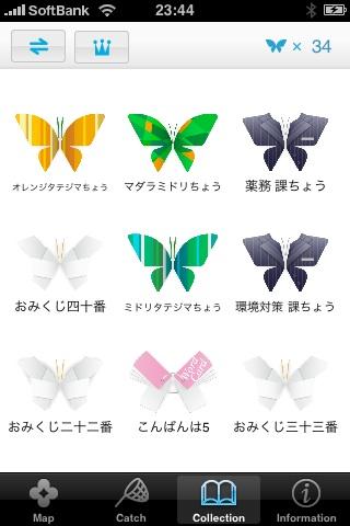 集めた蝶たち