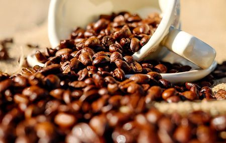 実験で間違えて致死量のカフェイン