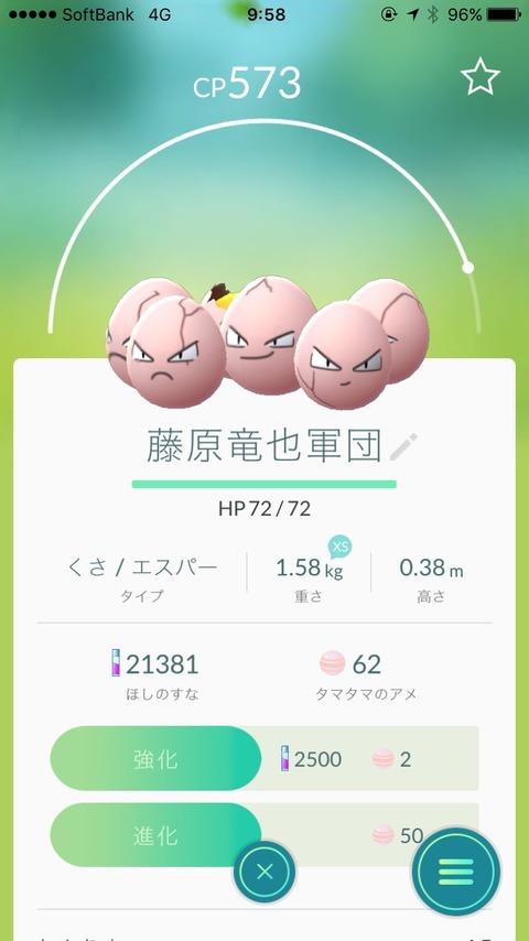 93146893-s.jpg