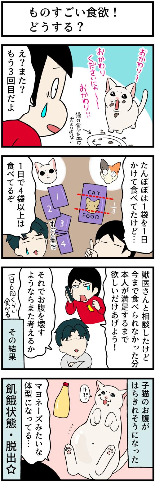 20210611ご飯の話2