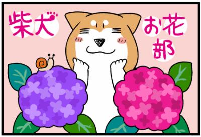 柴犬お花部シリーズ