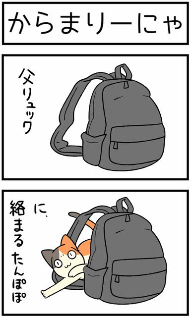 20200826絡まる1