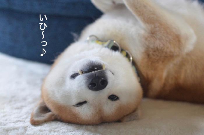 22日朝ブログ2