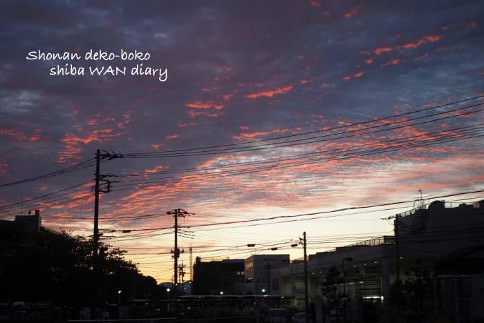 18日夜ブログ1