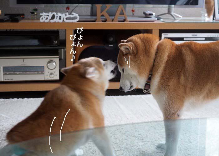 16日夕ブログ3