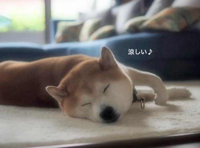 10日朝ブログ1