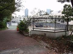 西新宿子ども園