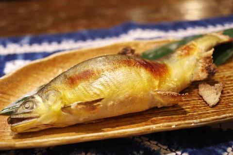 fish-3805768_1920