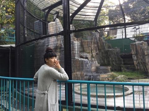 http://n.mynv.jp/news/2017/11/11/052/images/001l.jpg