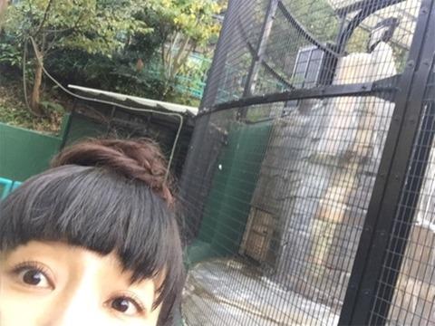 http://n.mynv.jp/news/2017/11/11/052/images/002l.jpg
