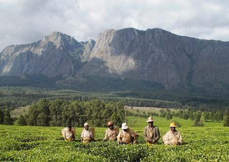 location_mountmulanje1