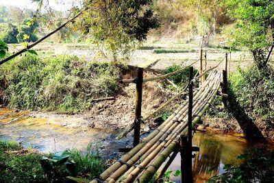 マインドフルファームつり橋
