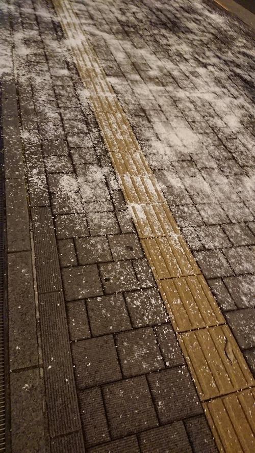 犬の散歩時は融雪剤に注意しよう!