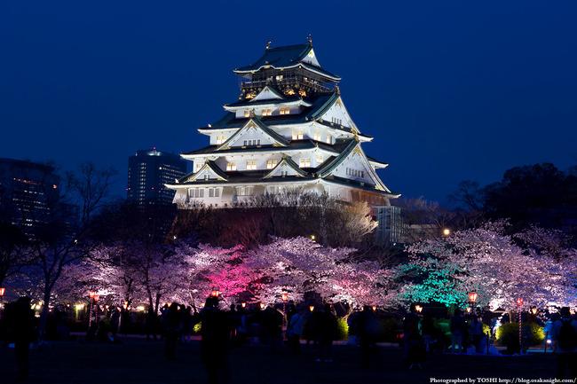 osakajo_sakura_night2012_01
