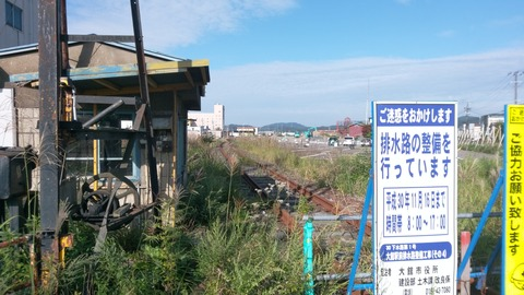 DSC_0374