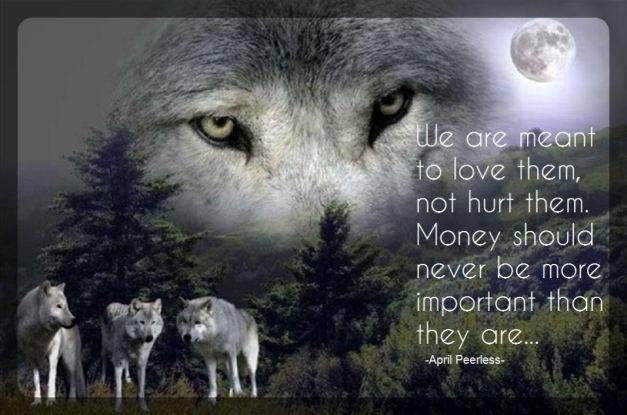 WolfSave