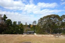 View from Tenshudai