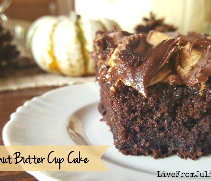 EASY Peanut Butter Cup Cake