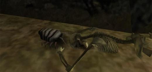 Готика 1 — Мясной жук