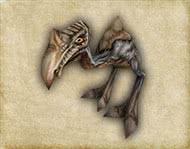 Готика 1 Монстры - Молодой падальщик