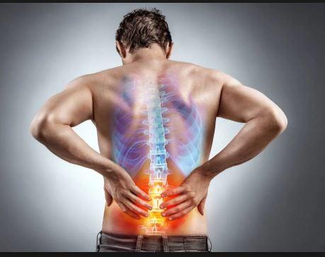 back pain , disc problem, disc disease. back exercise