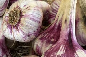 Garlic , white garlic, nitrous oxide rich food, gas removal from body , improve blood flow in body