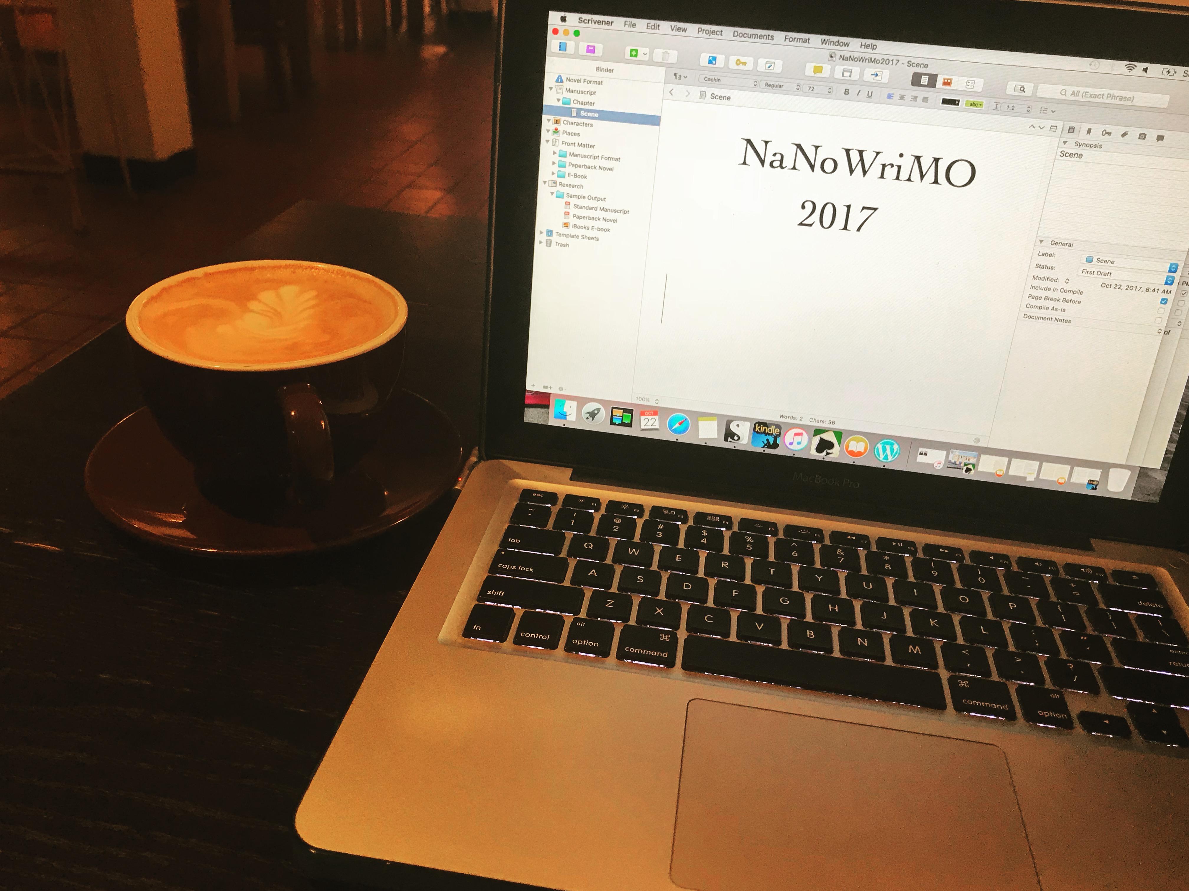 Ten Years Of NaNoWriMo