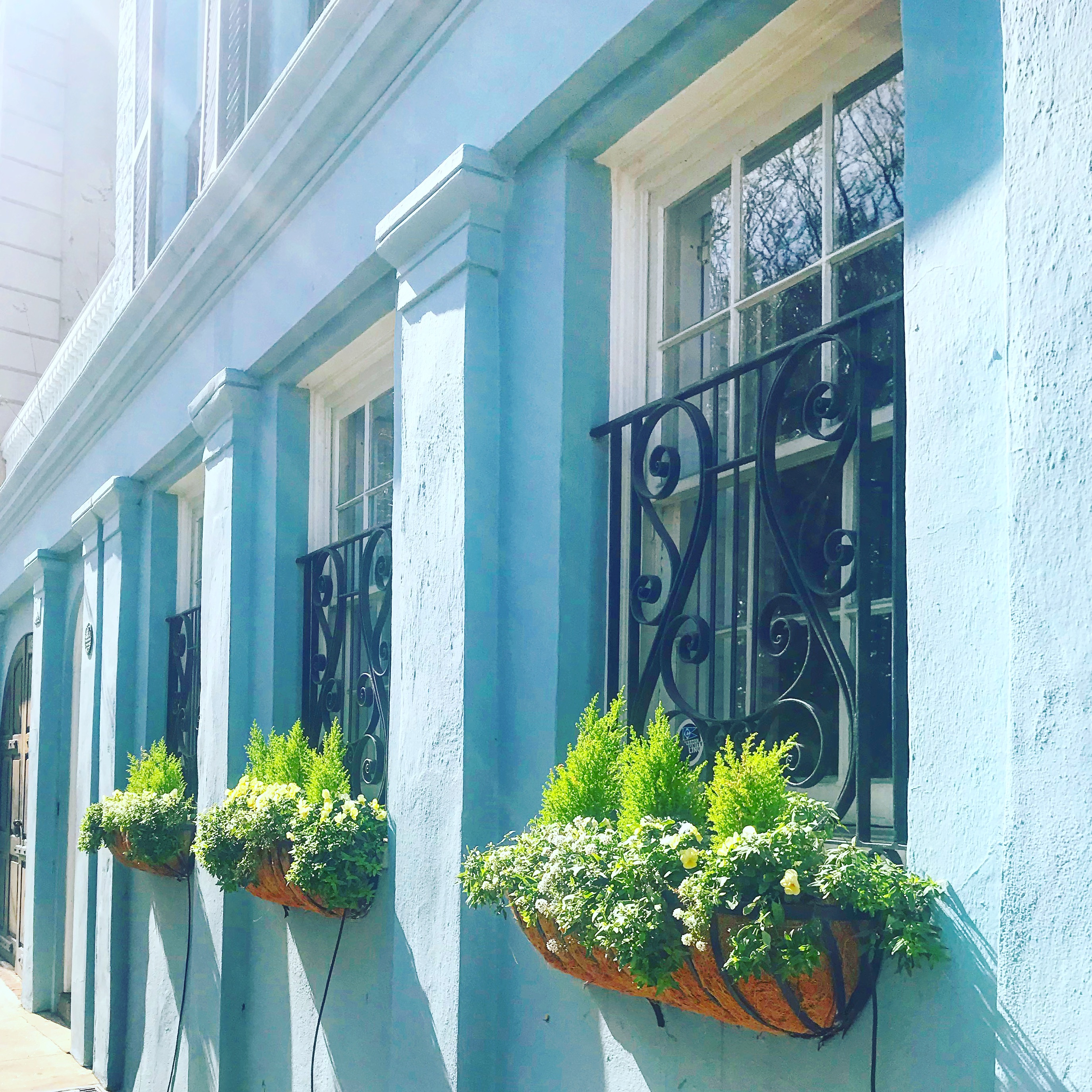 Wanderlusting: Through Charleston