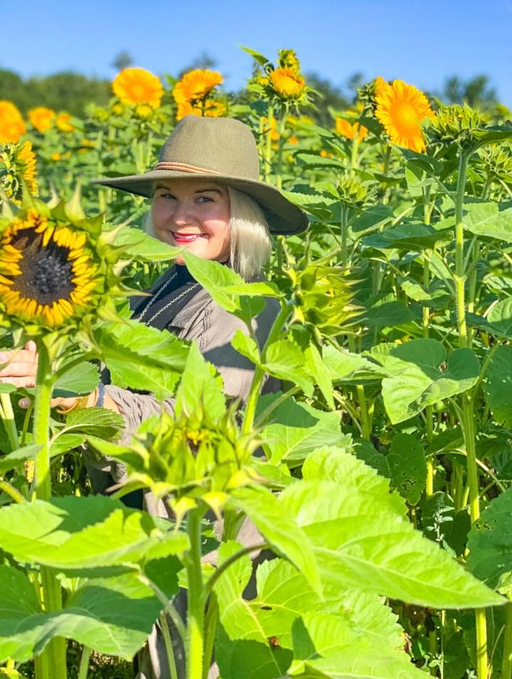 Wanderlusting: In the Sunflower Fields