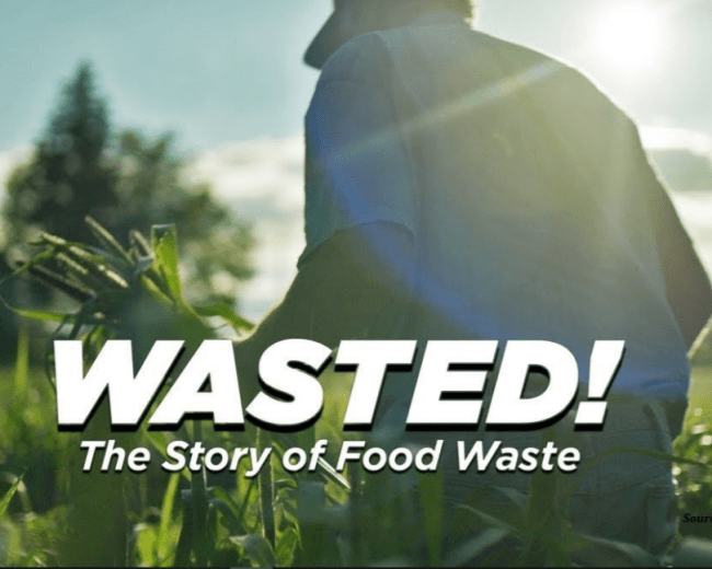 Food Wastage- Think Before You Waste