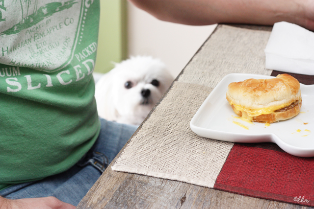 Even Parker wanted a taste of the Jimmy Dean goodness...
