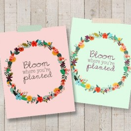 Colorful reminders to Bloom Where You're Planted. Free printables with livelaughrowe.com