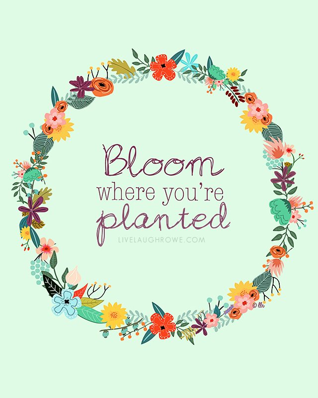 Such a great reminder!  Bloom where you're planted.  Two color options for this free printable too. livelaughrowe.com