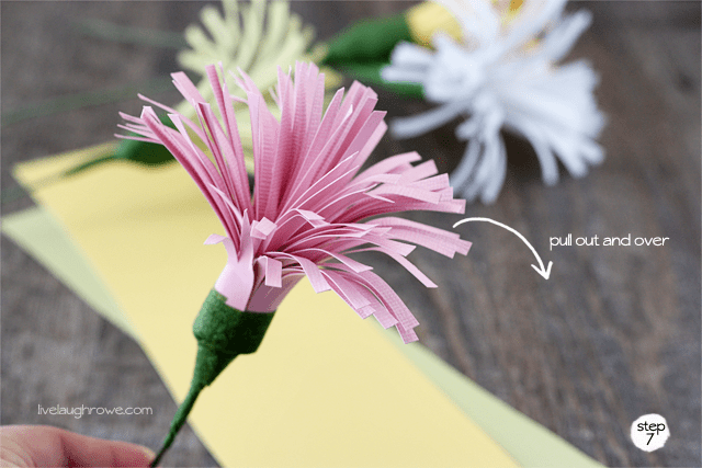 pull the paper out and over, allowing the paper flower to bloom