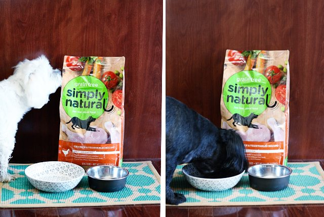 All american dogs -- We eat. We sleep. We play!   And when we eat, we're loving this grain free Simply Natural® Food.  www.livelaughrowe.com