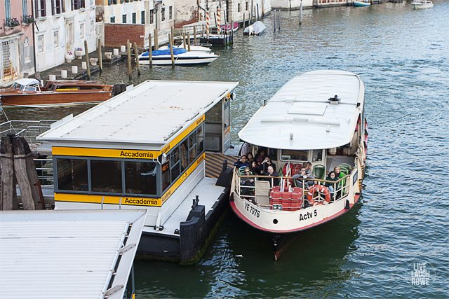 Water bus in Venice, Italy