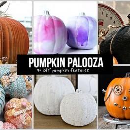 It's a Pumpkin Palooza featuring YOU!