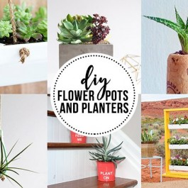 DIY Flower Pots and Plants for those with a green thumb!