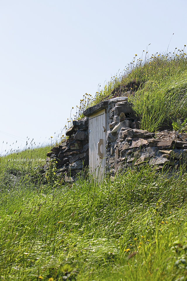 Root Cellar amongst the rolling hills of Elliston, Newfoundland. Picture courtesy of livelaughrowe.com