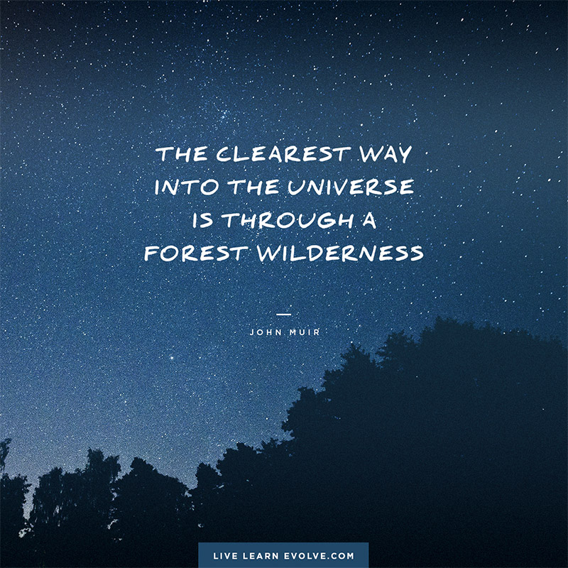 universe_wilderness_john_muir_small_web