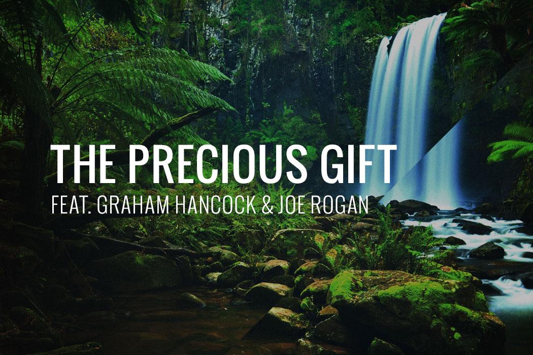 precious-gift-hancock-joe-rogan