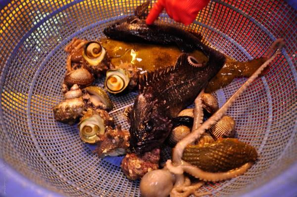 Busan Fish Market-14