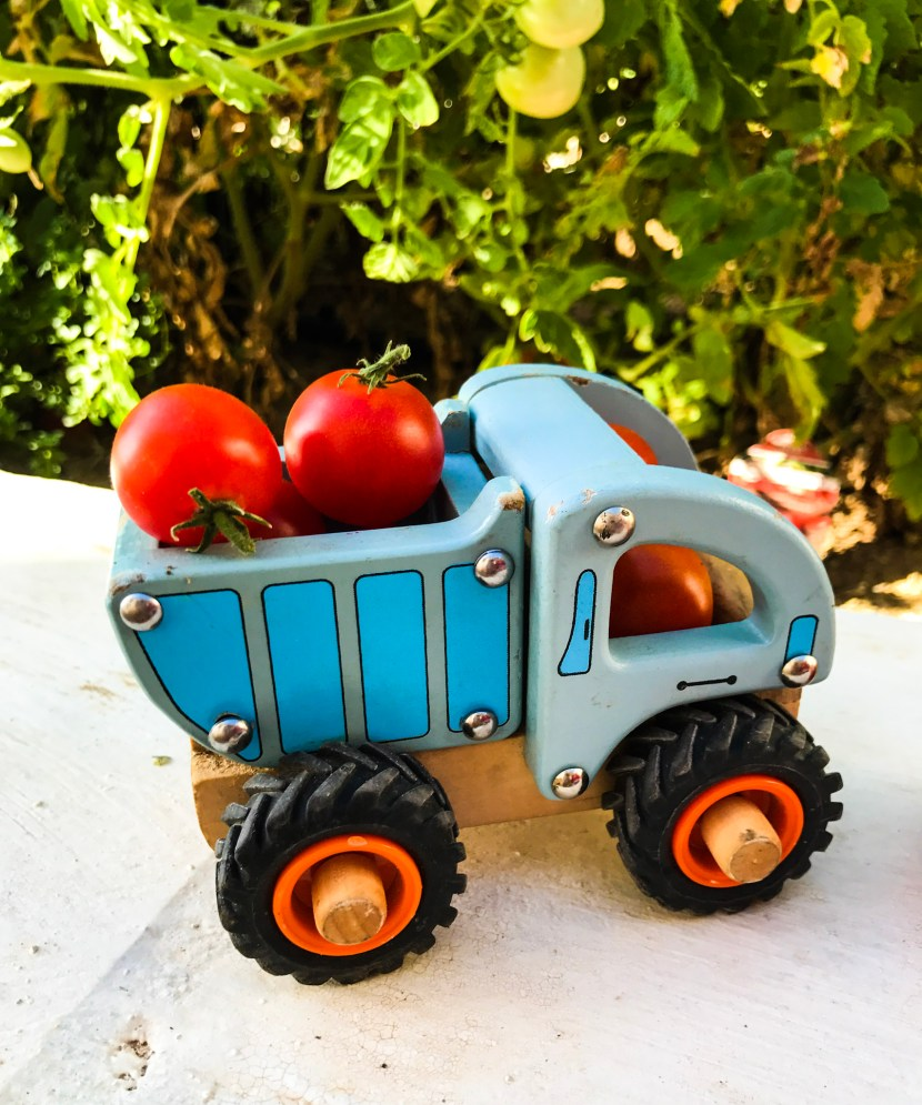 Tomatoes in toy truck