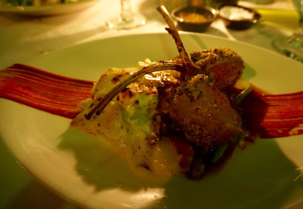 Fabulous lamb chops and CoCo Bistro